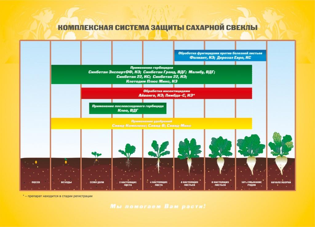 барнаул дистрибьюторы продуктов здорового питания